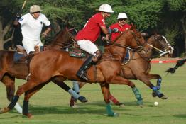 The President's Polo Cup